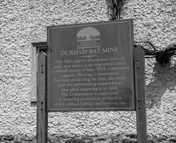 Durham bat mine sign FOR PUB